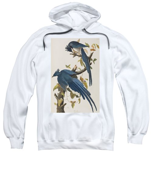 Columbia Jay Sweatshirt by John James Audubon