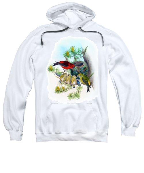 Common Crossbill Antique Bird Print John Gould Hc Richter Birds Of Great Britain  Sweatshirt by Orchard Arts