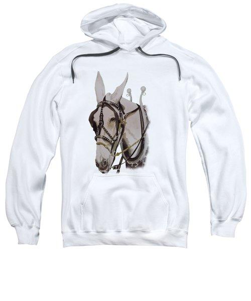 Connie The Mule Sweatshirt by Gary Thomas