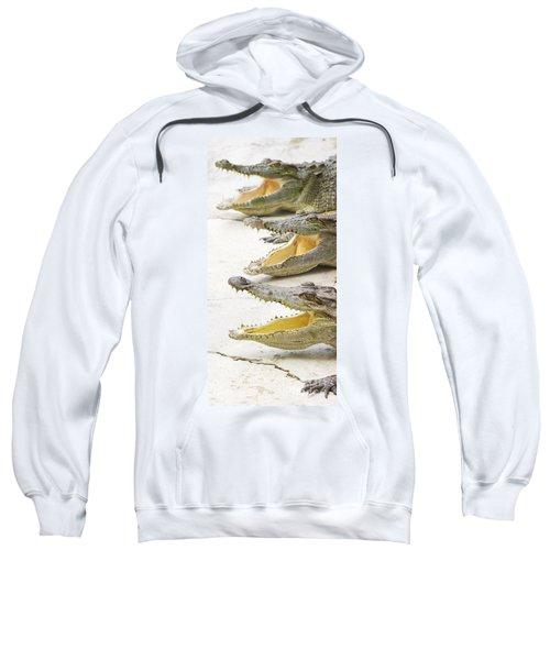 Crocodile Choir Sweatshirt by Jorgo Photography - Wall Art Gallery
