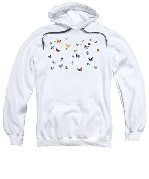 Delphine Sweatshirt by Amy Kirkpatrick