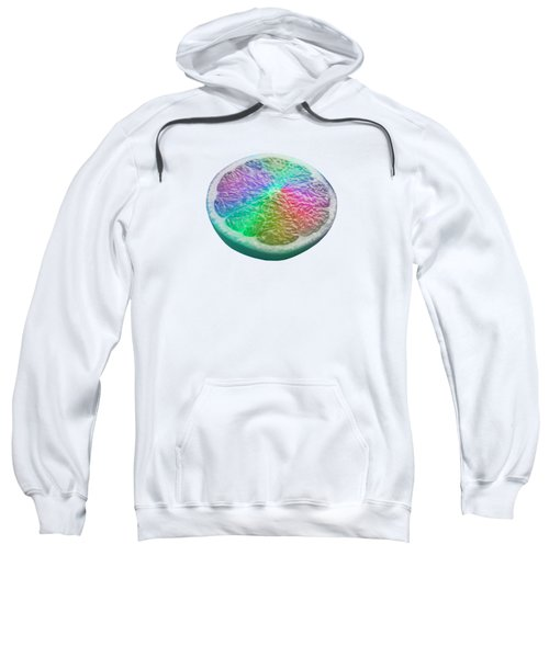 Dreamfruit Sweatshirt by Mind Drip