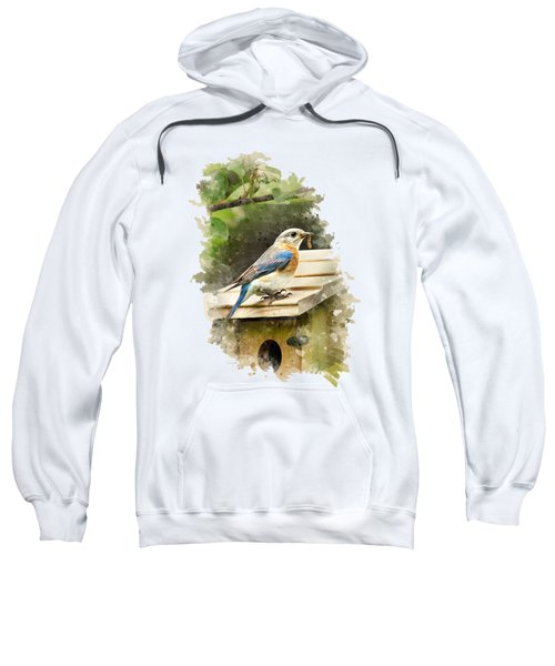 Eastern Bluebird Watercolor Art Sweatshirt by Christina Rollo