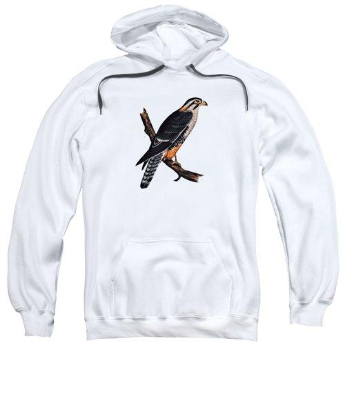 Falcon Aplomado Falcon Sweatshirt by Movie Poster Prints