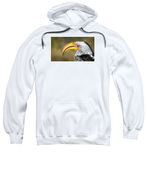 Flying Banana Sweatshirt by Joe Bonita