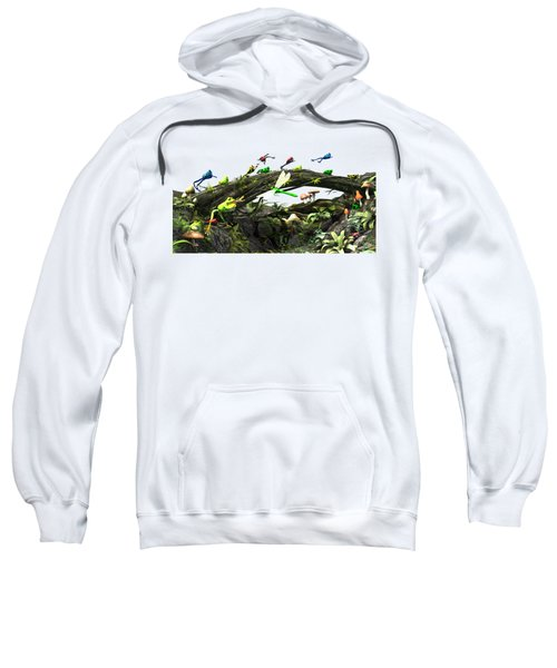 Frog Glen Sweatshirt by Methune Hively