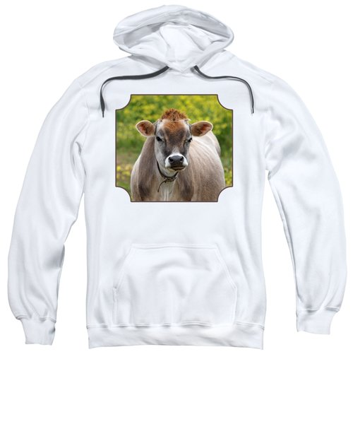 Funny Jersey Cow -square Sweatshirt by Gill Billington