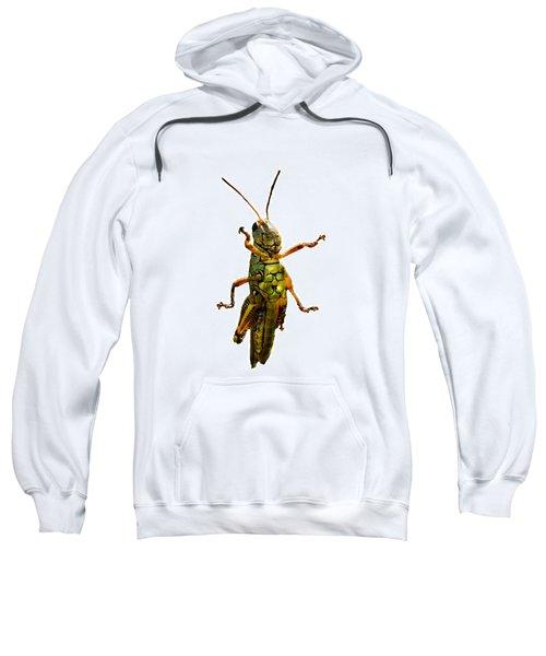 Grasshopper II Sweatshirt by Gary Adkins