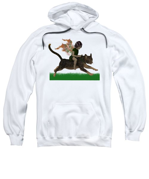 Having Fun Sweatshirt by Nancy Pauling