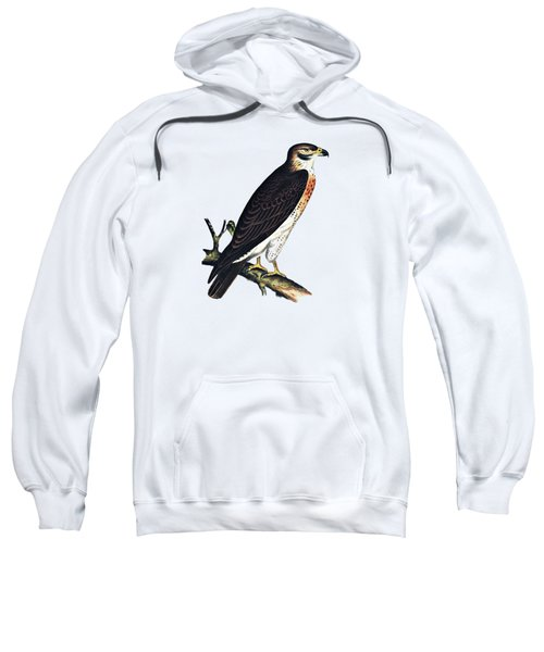 Hawk Swainsons Hawk Sweatshirt by Movie Poster Prints