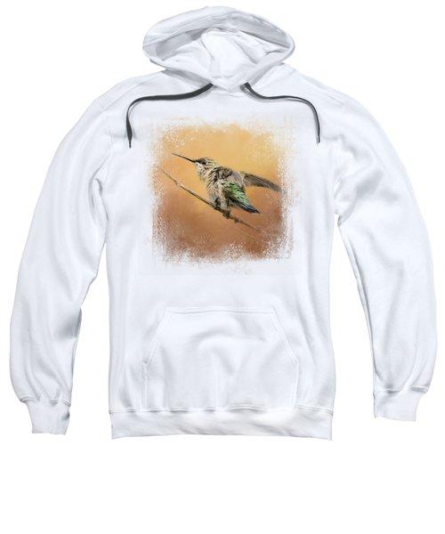 Hummingbird On Peach Sweatshirt by Jai Johnson