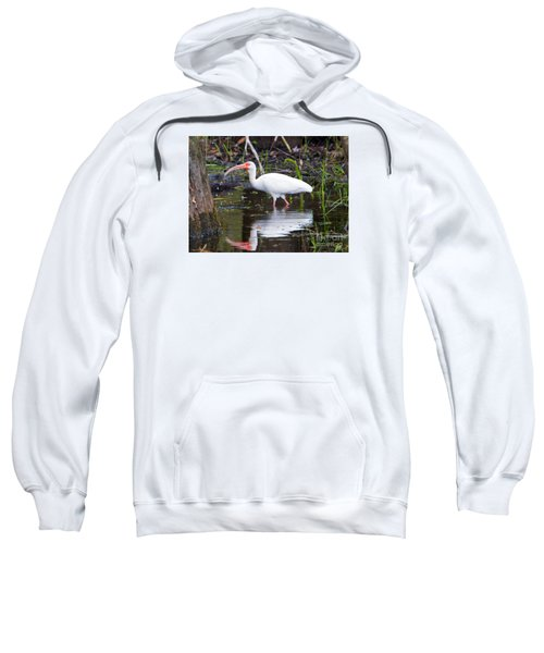 Ibis Drink Sweatshirt by Mike Dawson