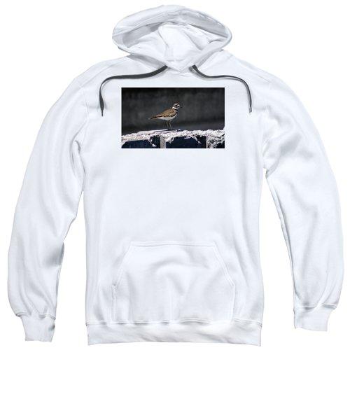Killdeer Sweatshirt by M Images Fine Art Photography and Artwork