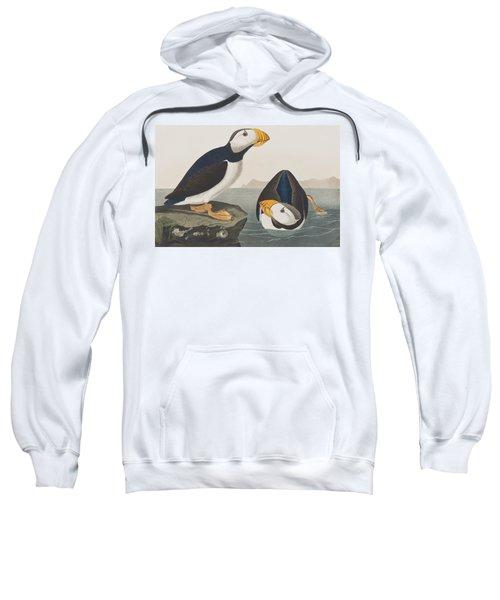 Large Billed Puffin Sweatshirt by John James Audubon