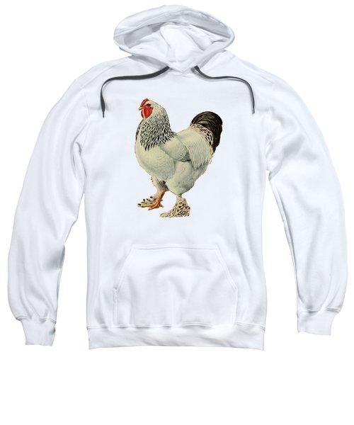 Light Brahmas Rooster Sweatshirt by Unknown
