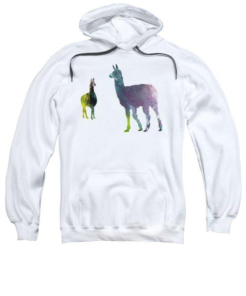 Llama Sweatshirt by Mordax Furittus