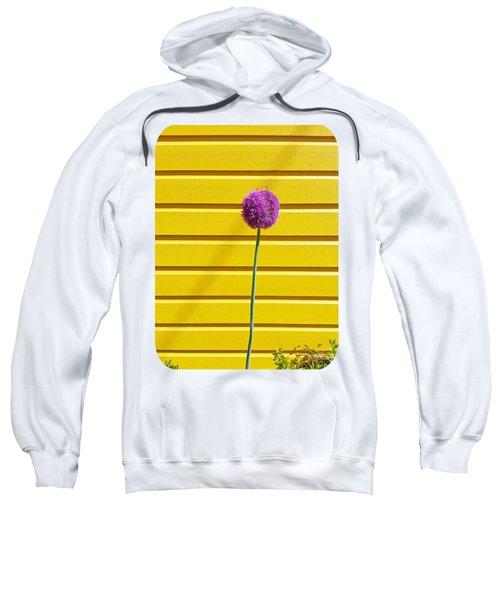 Lollipop Head Sweatshirt by Ethna Gillespie