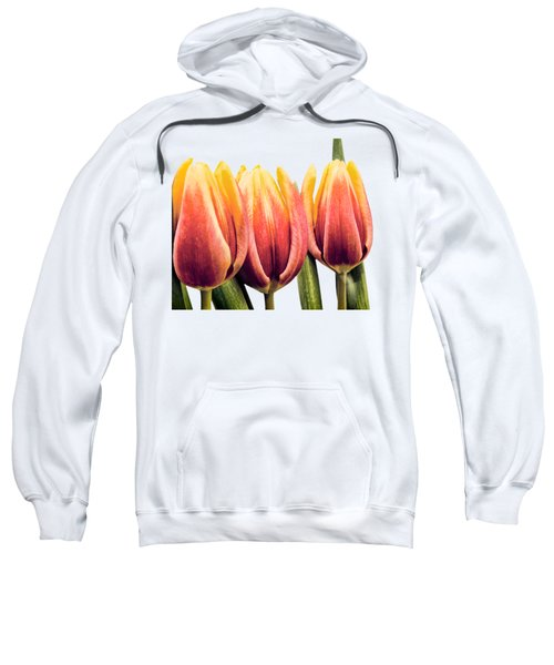 Lomo Tulips Sweatshirt by Sebastien Coell