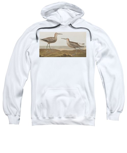 Long-legged Sandpiper Sweatshirt by John James Audubon