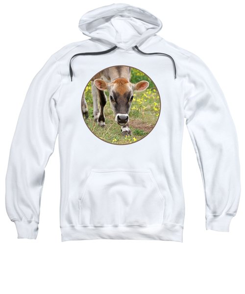 Look Into My Eyes - Jersey Cow - Square Sweatshirt by Gill Billington