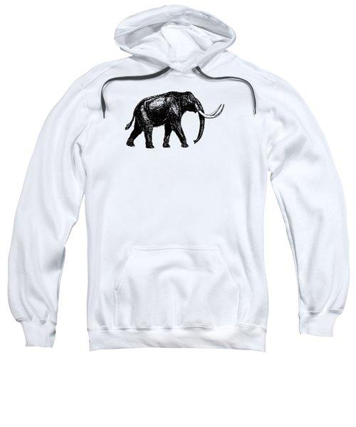 Mammoth Tee Sweatshirt by Edward Fielding