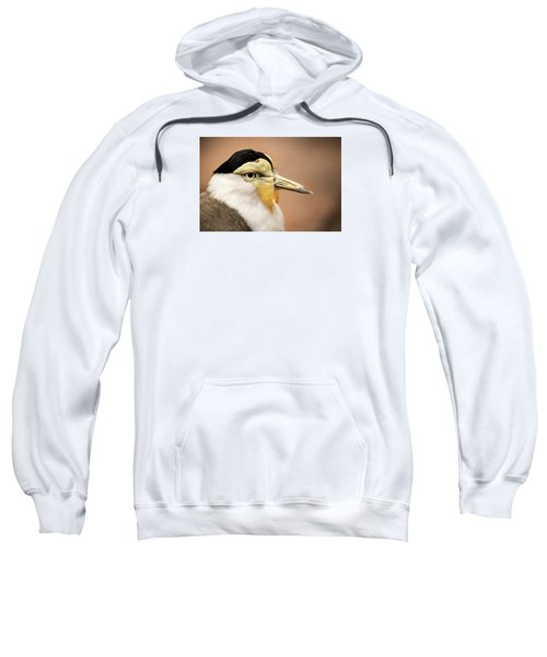 Masked Lapwing Sweatshirt by Don Johnson