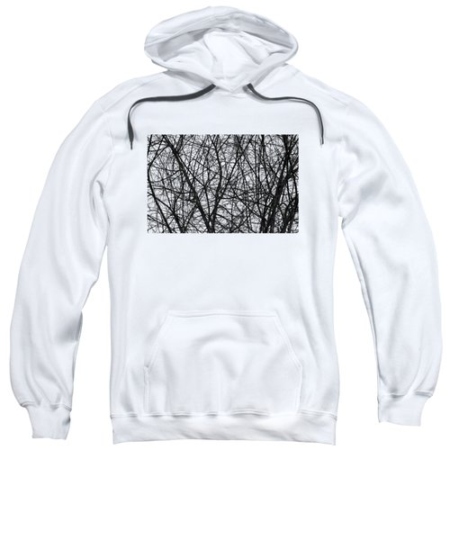 Natural Trees Map Sweatshirt by Konstantin Sevostyanov