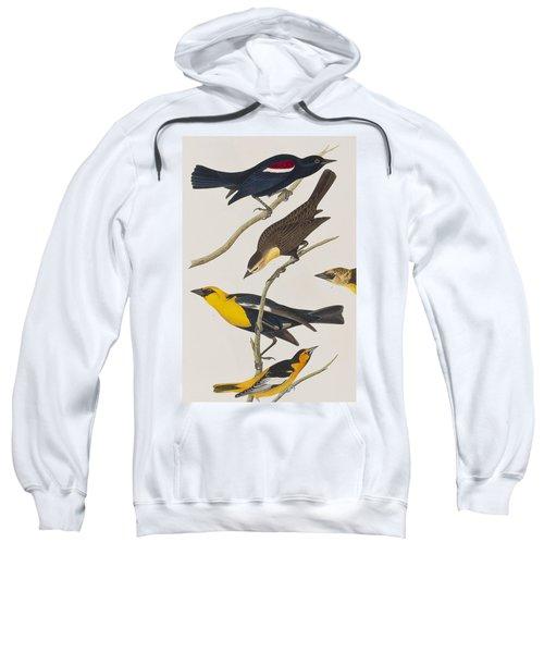 Nuttall's Starling Yellow-headed Troopial Bullock's Oriole Sweatshirt by John James Audubon