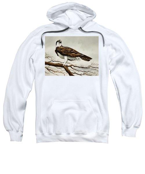 Osprey Sea Hawk Sweatshirt by James Williamson