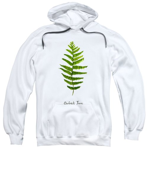 Ostrich Fern Sweatshirt by Color Color