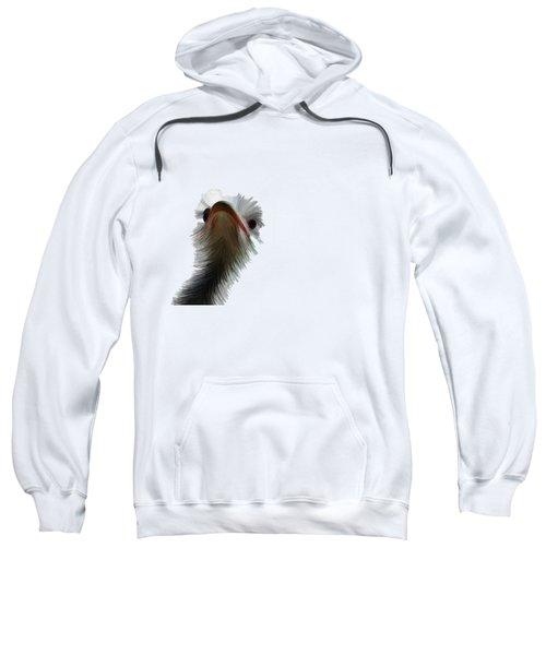 Ostrich Sweatshirt by Priscilla Wolfe
