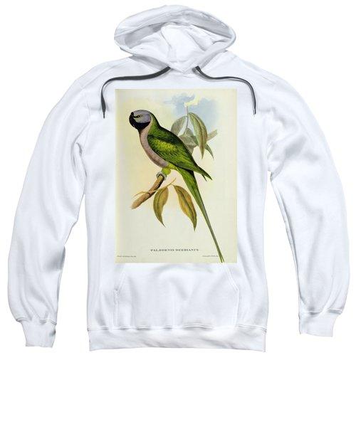 Parakeet Sweatshirt by John Gould