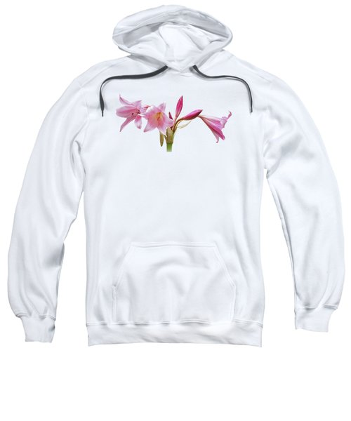 Pink Lilies On Black Sweatshirt by Gill Billington