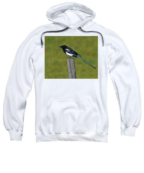 Prairie Perch Sweatshirt by Tony Beck