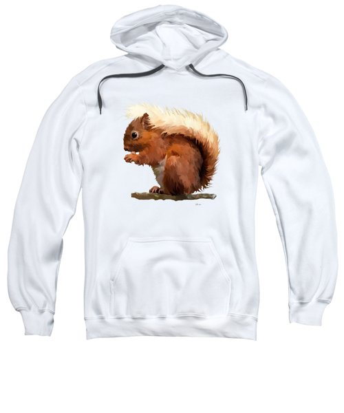Red Squirrel Sweatshirt by Bamalam  Photography