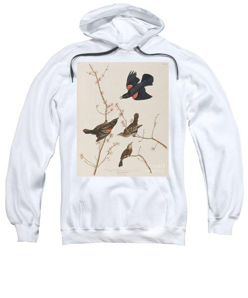 Red Winged Starling Or Marsh Blackbird Sweatshirt by John James Audubon