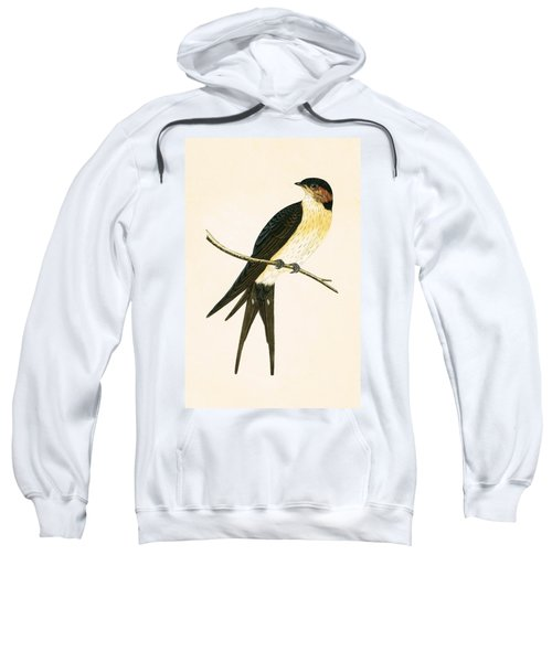 Rufous Swallow Sweatshirt by English School