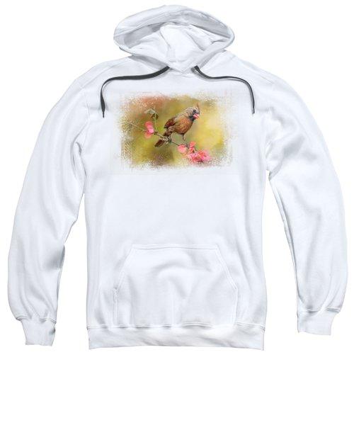 Spring Cardinal 1 Sweatshirt by Jai Johnson