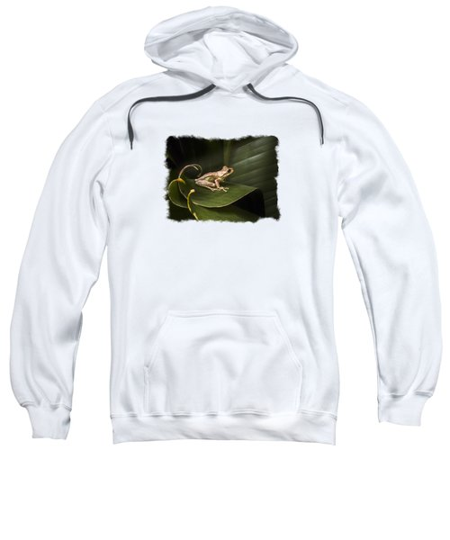 Surfing The Wave Bordered Sweatshirt by Debra and Dave Vanderlaan