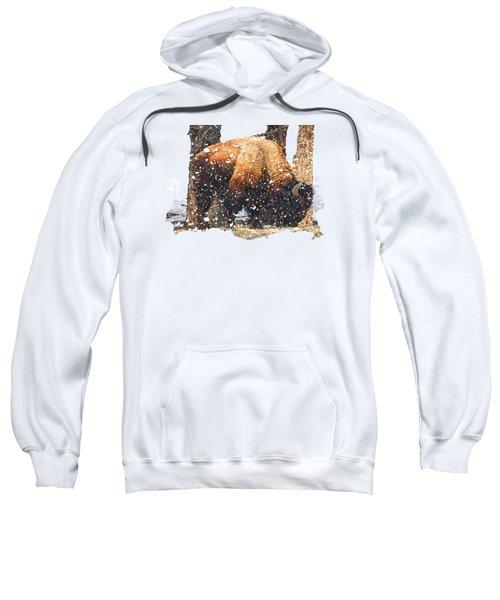The Majestic Bison Sweatshirt by Image Takers Photography LLC - Carol Haddon