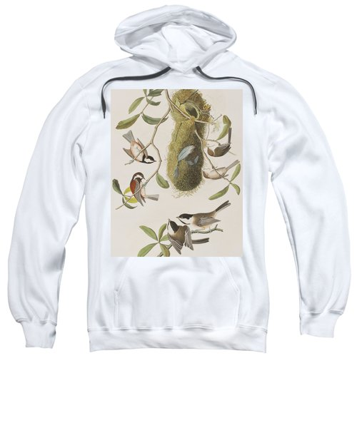 Titmouses Sweatshirt by John James Audubon