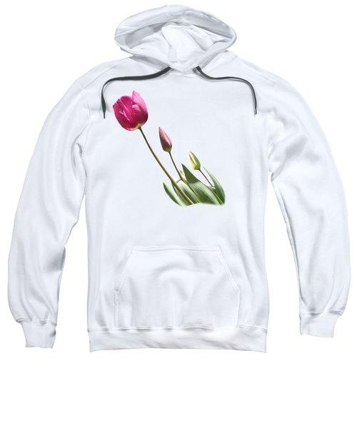 Tulips On Transparent Background Sweatshirt by Terri Waters