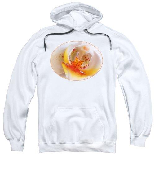 Warm Glow Sweatshirt by Gill Billington