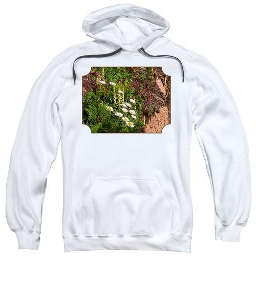 Wild Daisies In The Rocks Sweatshirt by Gill Billington
