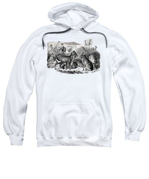 woodcut drawing of South American Maras Sweatshirt by The one eyed Raven