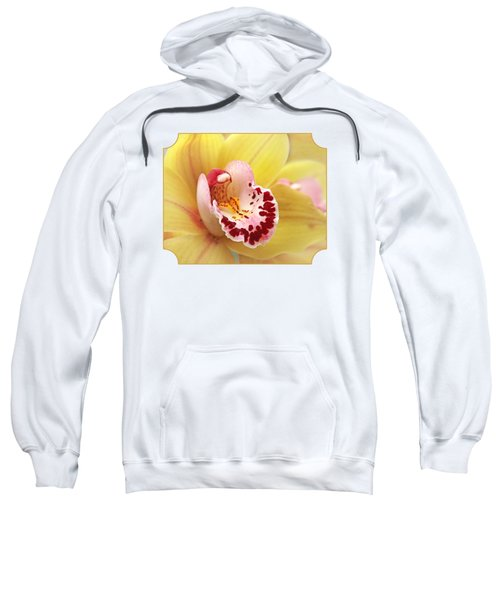 Yellow Cymbidium Orchid Sweatshirt by Gill Billington