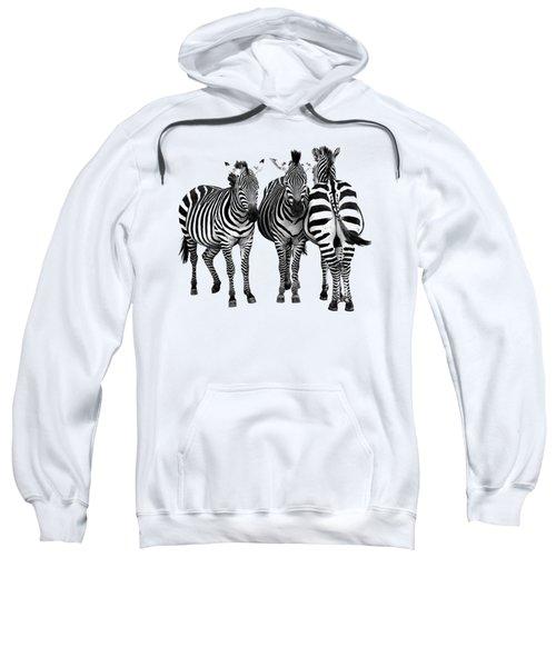 Zebra - Three's A Crowd Sweatshirt by Gill Billington