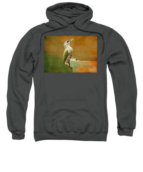 Grey-headed Woodpecker Sweatshirt by Heike Hultsch