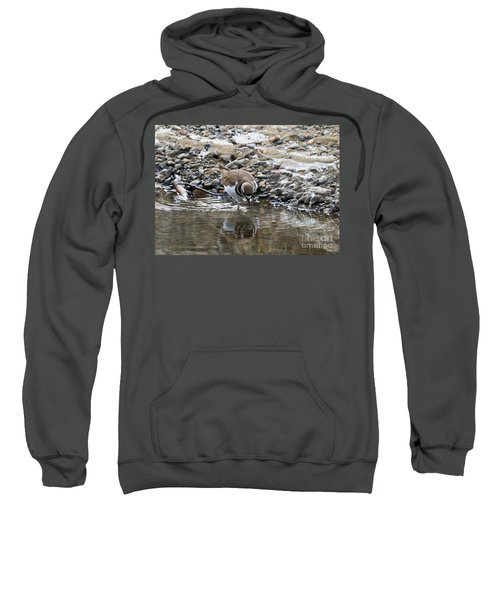 Mirror Mirror Sweatshirt by Mike Dawson