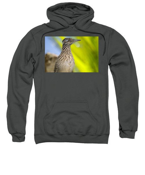 The Roadrunner  Sweatshirt by Saija  Lehtonen